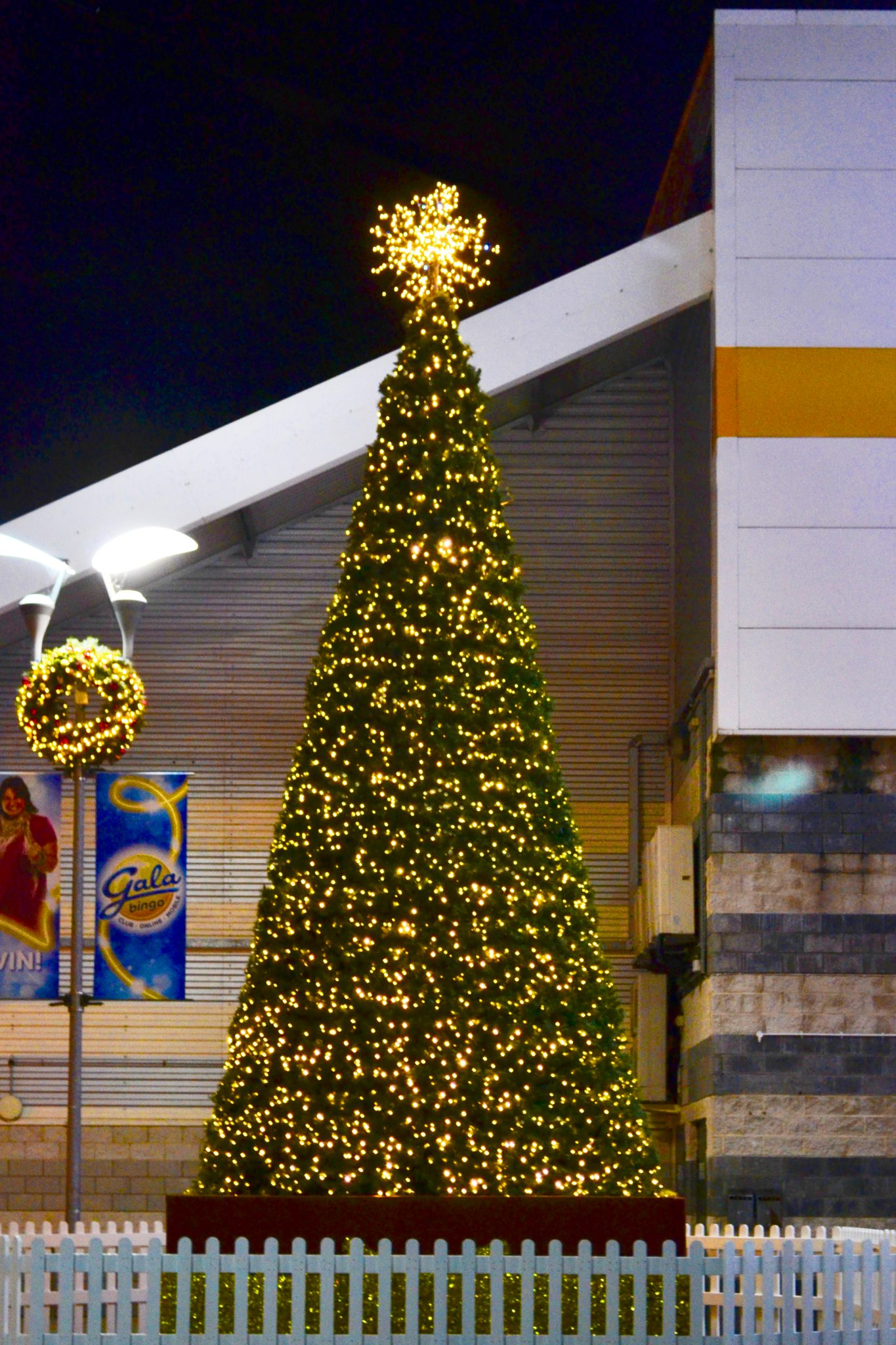 Large commercial Christmas tree 18ft tall