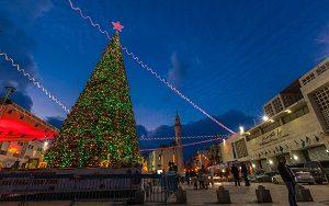 12metre giant Christmas tree in Bethlehem
