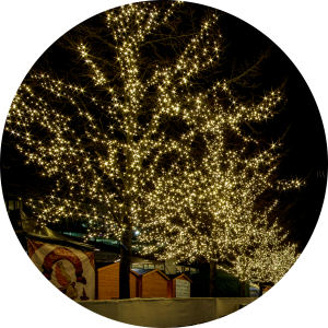 Lighting large outdoor trees